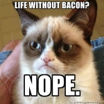 Life Without Bacon Grumpy Cat