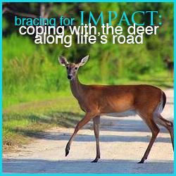 bracing for impact